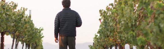 Aaron Wines opens new wine tasting room